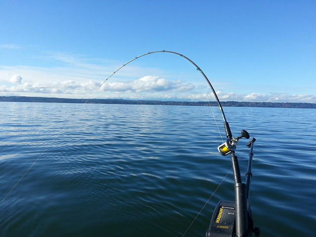 Seattle fishing guide all star fishing charters for Fishing charters seattle